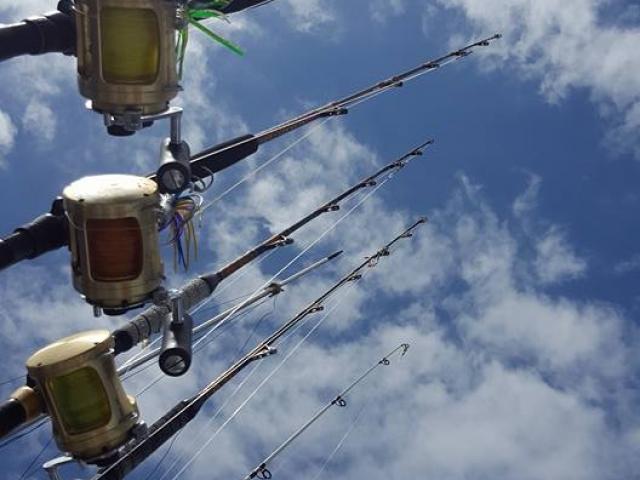 הפלגת דיג